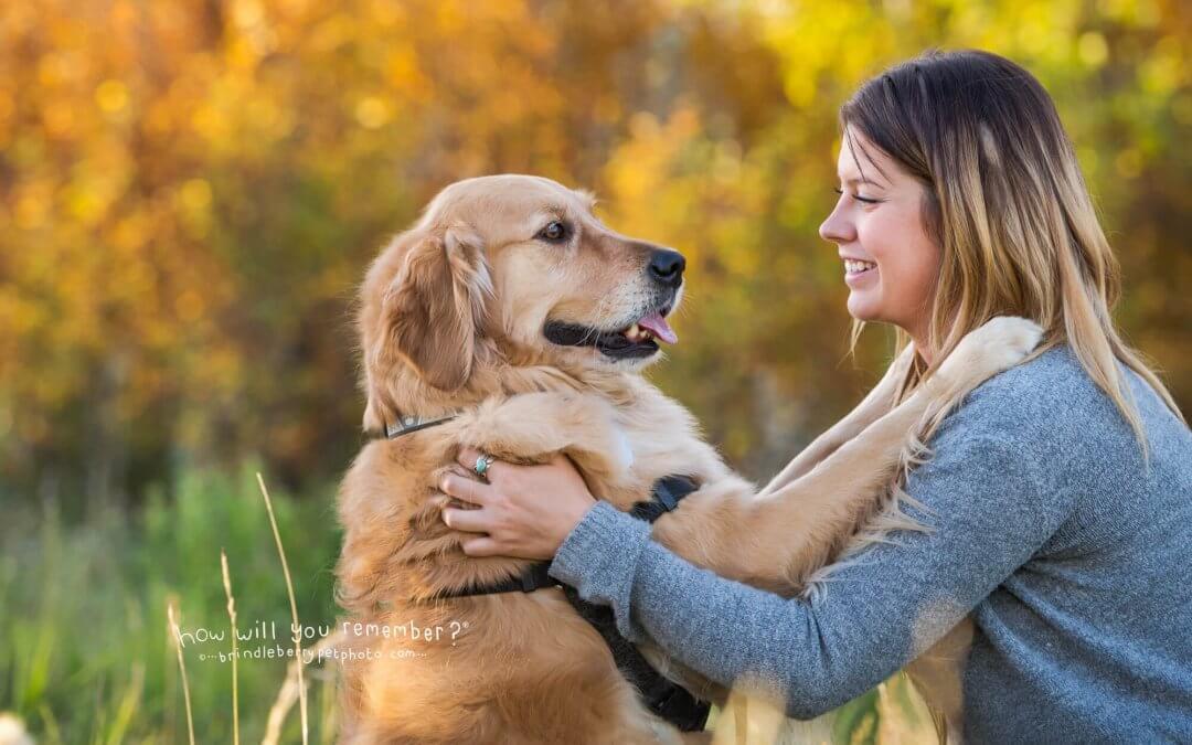Choosing a Pet Photographer