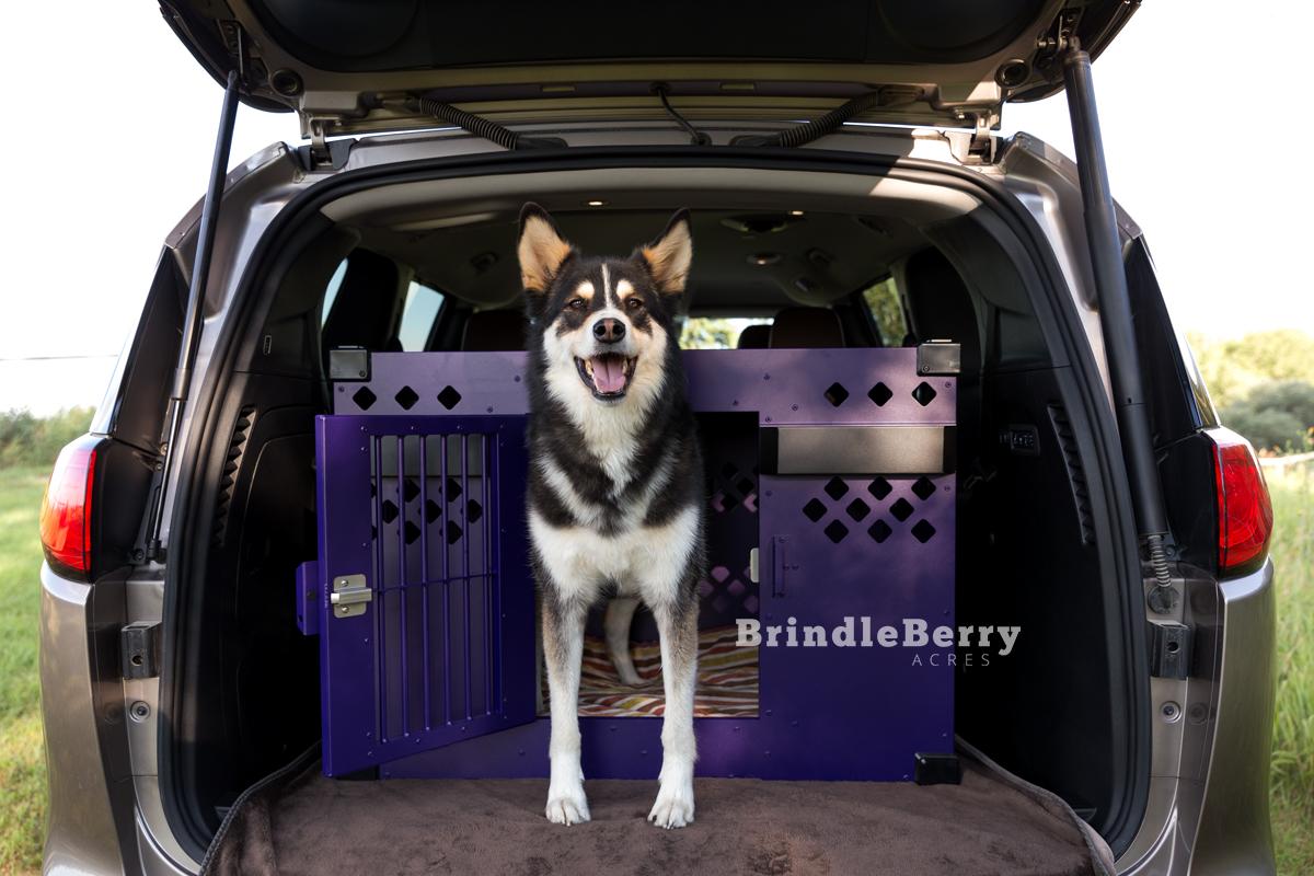 HUSKY DOG CRATE VAN