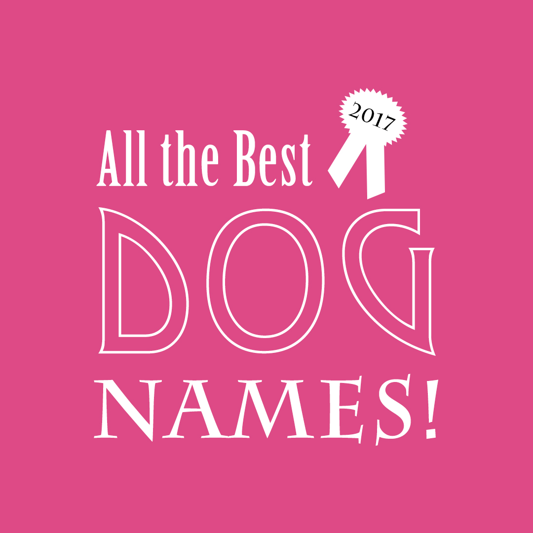 All the Best Dog Names of 2017