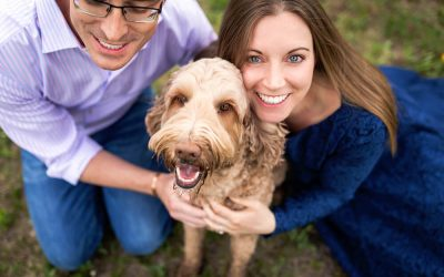Albus' Priddis Photo Session [Outdoor Dog Photography]