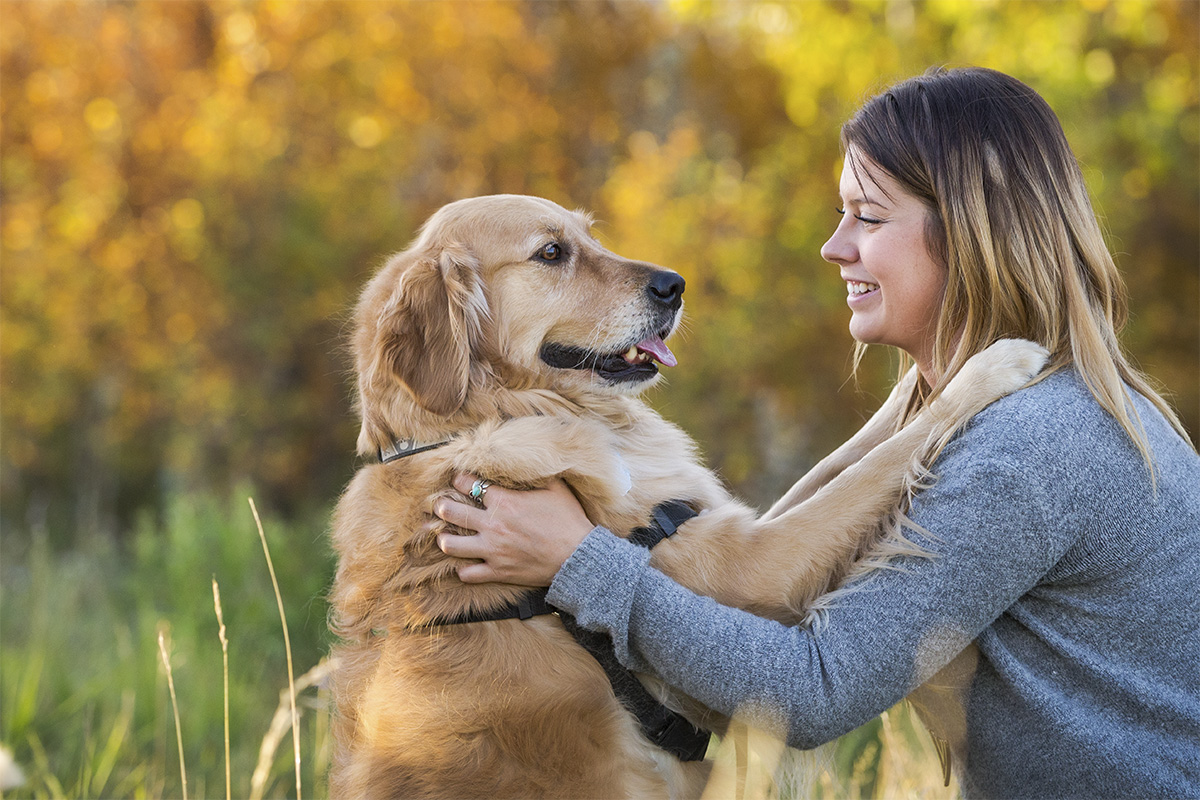 golden retreiver hugging girl