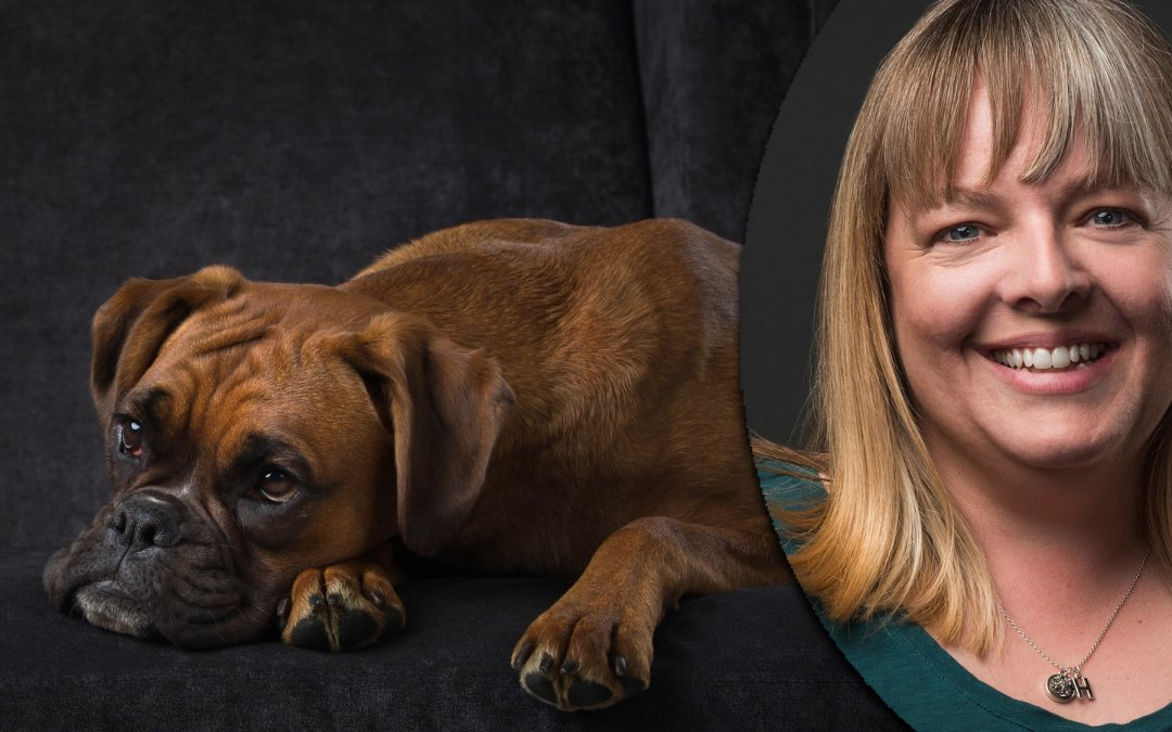 Animal Image Makers Conference Speaker Announcement