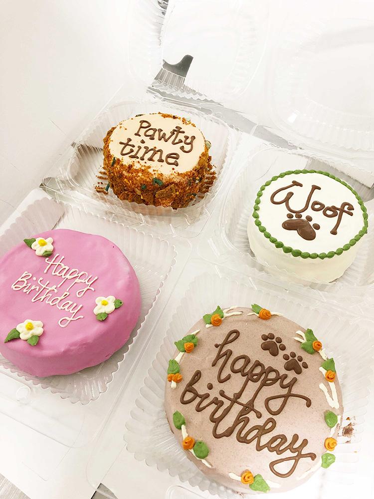 calgary dog cakes